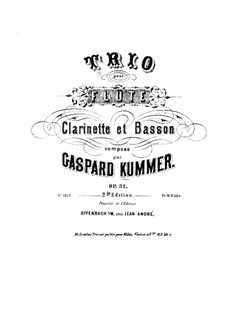 Trio for Flute, Clarinet and Bassoon, Op.32: Flute part by Kaspar Kummer