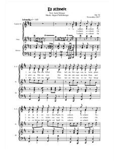 Es schneit, Op.54: Es schneit by Jürgen Pfaffenberger