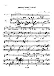 Freudvoll und leidvoll, S.280: Deutscher Text by Franz Liszt