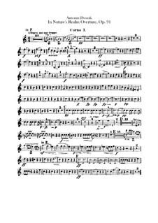 V přírodě (In Nature's Realm), B.168 Op.91: Horns parts by Antonín Dvořák