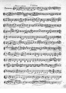 Trio for Flute, Violin and Сello No.2, Op.39: Violin part by Raphael Dressler