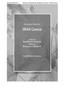 Wild Geese: Wild Geese by Bronwyn Edwards