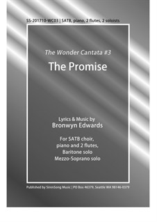 The Promise: The Promise by Bronwyn Edwards