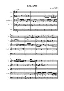 Sonata for Flute and Harpsichord No.2 in E Flat Major, BWV 1031: Siciliano. Arrangement for wind ensemble by Johann Sebastian Bach