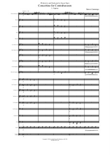 Concertino for contrabassoon and concert band: Score and complete parts by Barton Cummings