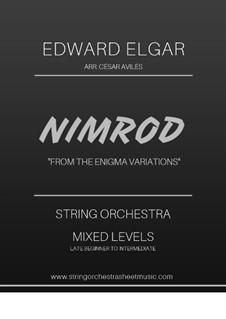 Variation No.9 'Nimrod': For string orchestra by Edward Elgar