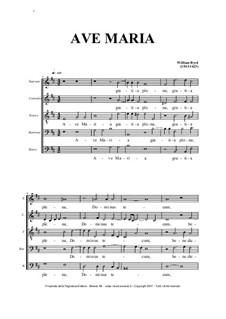 Ave Maria for SATBarB Choir: Ave Maria for SATBarB Choir by William Byrd