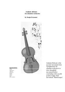 Symphonieta for chamber orchestra: Movement II 'Andante Delicato' by Sonja Grossner