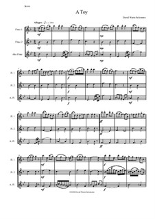 A Toy: For flute trio (2 C flutes, 1 alto flute) by David W Solomons
