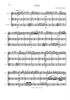 A Toy: For piccolo, flute and alto flute by David W Solomons