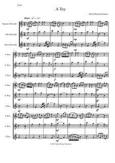 A Toy: For recorder trio by David W Solomons