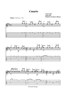 Canario: For guitar. Music and tab by Carlo Calvi