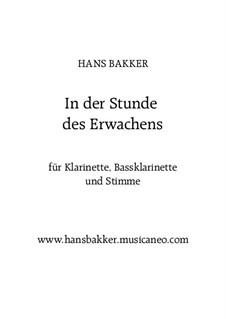 In der Stunde des Erwachens: Für Klarinette, Bassklarinette und Stimme by Hans Bakker