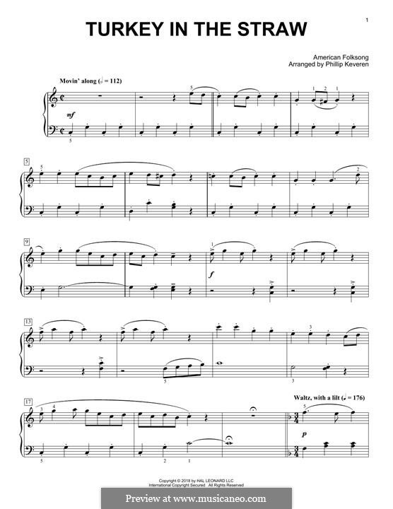 Turkey in the Straw: For piano by folklore