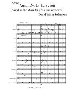 Agnus Dei for flute choir: Agnus Dei for flute choir by David W Solomons