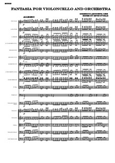 Fantasia for Violoncello and Orchestra: Complete score by Domenico Laboccetta