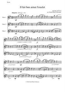 Il fait bon aimer l'oiselet: For 3 flutes by Antonie de Fevin