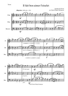 Il fait bon aimer l'oiselet: For wind trio by Antonie de Fevin