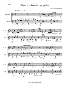 There is a Rose in my Garden: For alto flute and guitar by David W Solomons