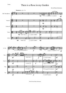 There is a Rose in my Garden: For alto saxophone and strings by David W Solomons