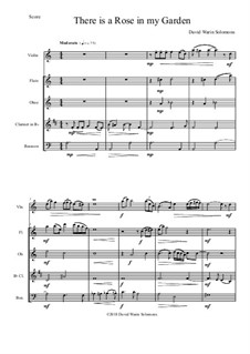 There is a Rose in my Garden: For violin solo and wind quartet by David W Solomons