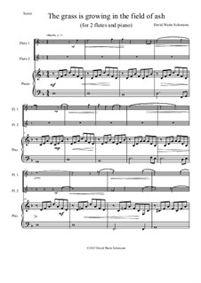 The grass is growing: For 2 flutes and piano by David W Solomons