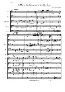 Sweet Suite: Marie for shame you lie abed too long for wind quintet by David W Solomons