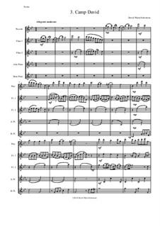 Sweet Suite: Camp David for flute quintet (piccolo, 2 flutes, alto flute and bass flute) by David W Solomons