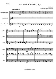 15 easy trios for recorder trio (soprano, alto, tenor): The Belle of Belfast city (I'll tell my ma) by folklore