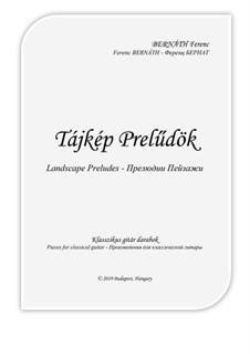 Landscape Preludes: For guitar by Ferenc Bernath