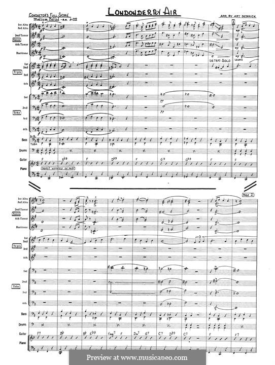 Danny Boy (Printable Scores): For chamber orchestra – full score by folklore