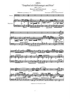 20 Arias from Cantatas for Bassoon and Harpsichord: Aria (Empfind ich Höllenangst und Pein), BWV 3 No.3 by Johann Sebastian Bach