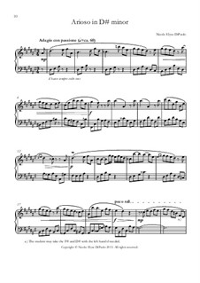 Venturing Beyond: Arioso in D sharp minor by Nicole DiPaolo