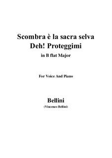Scombra è la sacra selva, Deh Proteggimi: Scombra è la sacra selva, Deh Proteggimi by Vincenzo Bellini