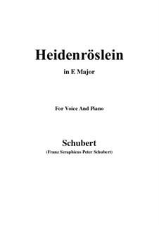 Heidenröslein (Little Hedge Rose), D.257 Op.3 No.3: For voice and piano (E Major) by Franz Schubert