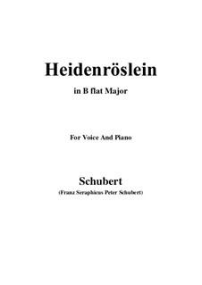 Heidenröslein (Little Hedge Rose), D.257 Op.3 No.3: For voice and piano (B flat Major) by Franz Schubert