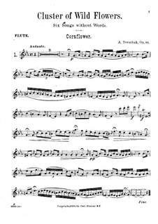 Cluster of Wild Flowers, Op.94: Solo part by Adolf Terschak
