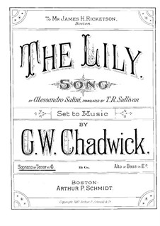 The Lily: The Lily by George Whitefield Chadwick