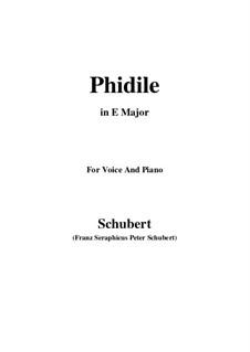Phidile, D.500: E Major by Franz Schubert