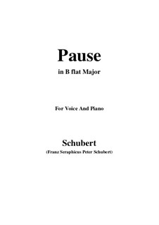 No.12 Pause (Interlude): For voice and piano (B flat Major) by Franz Schubert