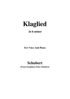 Klaglied (Lament), D.23 Op.131 No.3: B minor by Franz Schubert