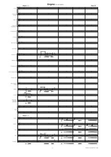 Enigma for Orchestra, Op.15: Enigma for Orchestra by Gisle Krogseth