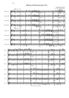 Alleluia In Resurrectione Tua: For clarinet octet or clarinet choir (E flats, B flats, Altos and Basses) by Jacob Handl