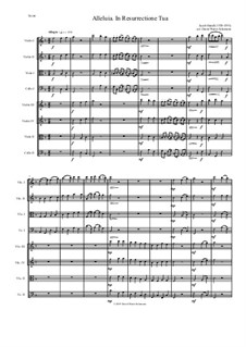 Alleluia In Resurrectione Tua: For string octet or string orchestra by Jacob Handl