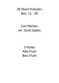 29 Short Preludes XI-XX, Op.51: 29 Short Preludes XI-XX by Carl Nielsen
