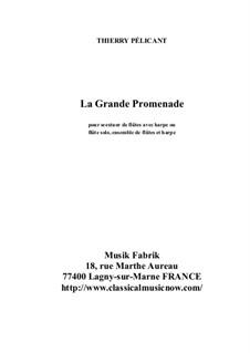 La Grande Promenade for solo flute, flute ensemble and harp: La Grande Promenade for solo flute, flute ensemble and harp by Thierry Pélicant