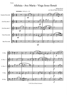 Alleluia - Ave Maria - Virga Jesse floruit: For recorder quintet by William Byrd