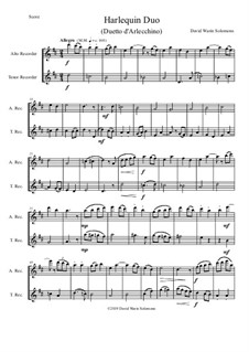 Harlequin Duo (Duetto d'Arlecchino): For alto and tenor recorders by David W Solomons