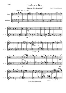 Harlequin Duo (Duetto d'Arlecchino): For flute and alto flute by David W Solomons