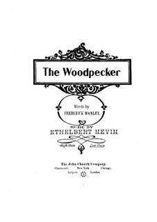 The Woodpecker: The Woodpecker by Ethelbert Woodbridge Nevin